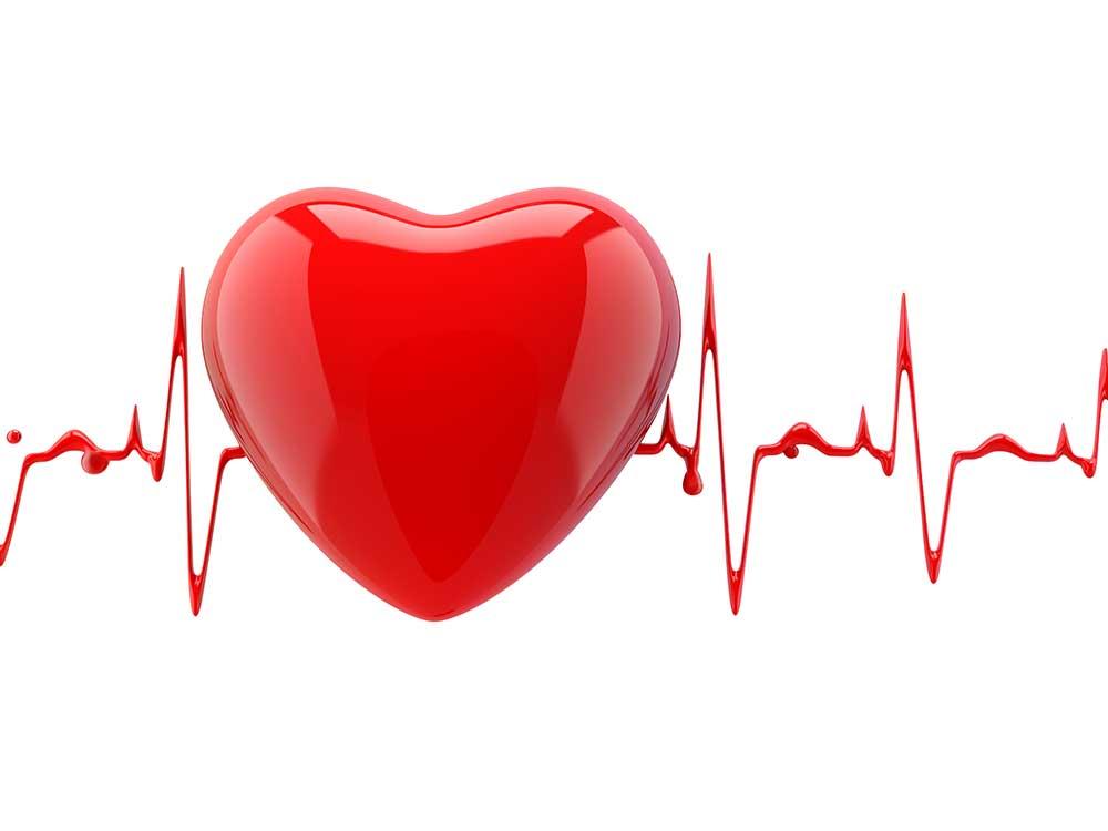 Heart-and-Heart-beat.jpg