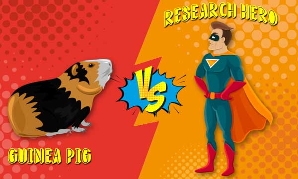 superhero-vs-guinea-pig.jpg