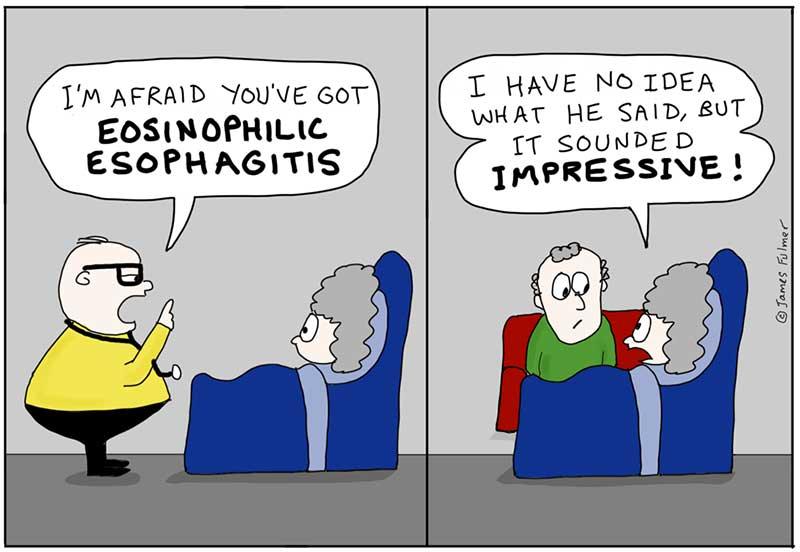 Comic written by Dr. Fulmer
